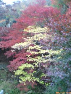 image/kakutetsu-2005-12-03T18:25:07-1.jpg