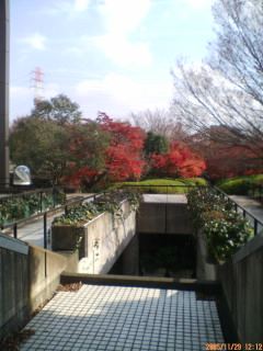 image/kakutetsu-2005-12-11T17:16:43-1.jpg